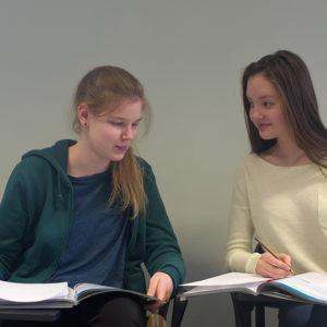CAE/C.1 eksami ettevalmistuskursus